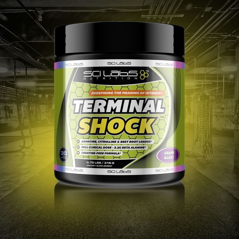 Terminal Shock by Scilabs Nutrition